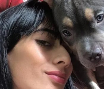 """""""They gave him no space"""": They demand justice for Homer, the pup who was forced to travel in flight holders and died"""