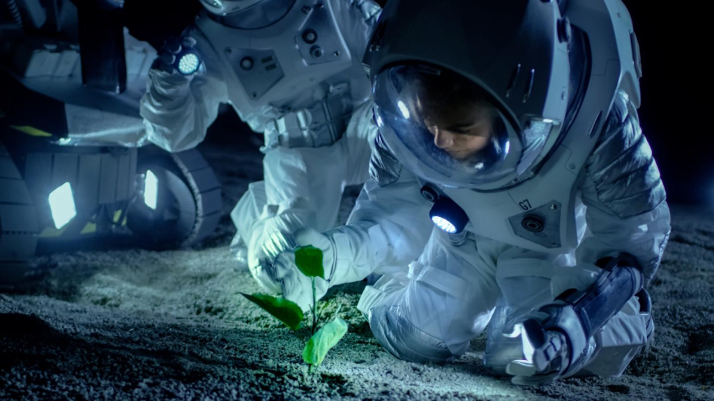 NASA launches food competition in outer space