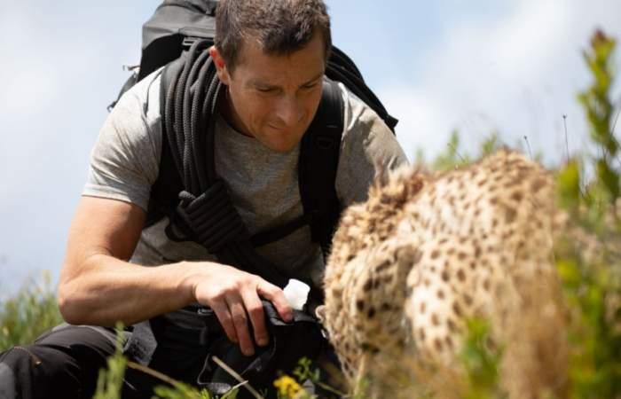 Misión safari: la película interactiva de Netflix que te lleva a una aventura por la sabana africana