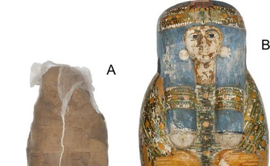¿Una momia con caparazón? Descubren raro tratamiento mortuorio