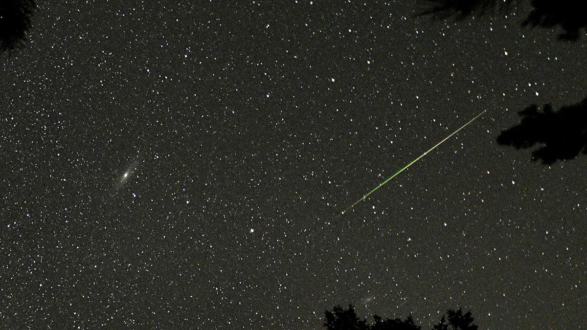 α-Centaurid Meteor Shower