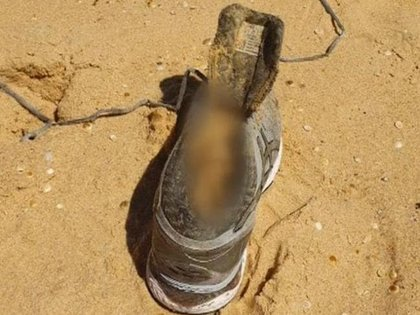 The shoe that was found on an Australian beach is owned by Melissa Kadick, but many forensic experts say it is in very good condition as it lasted three months at sea.  Photo: NSW Police