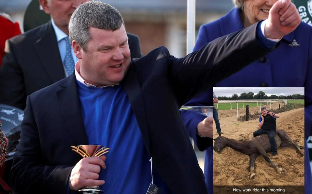 Gordon Elliott and the picture it doesn't deserve: with a cell phone on a dead horse