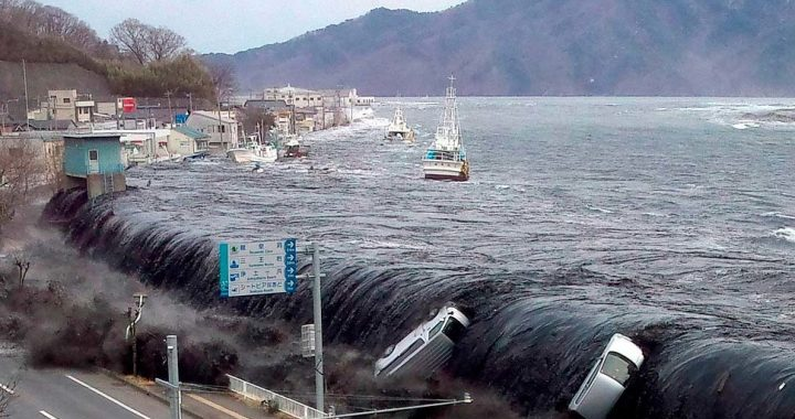 Japan.  Identification of the body of a woman missing in the 2011 tsunami