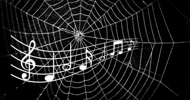 araña música