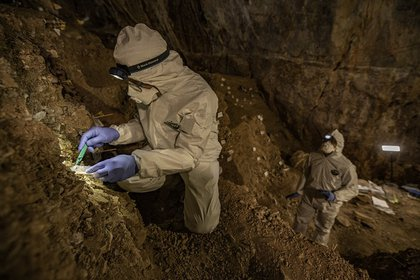 Associate Professor Mikel Winter Pedersen from the University of Copenhagen is sampling cave sediments for DNA.  Credit: Devlin A. Gandy