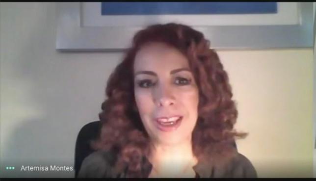 Artemisa Montes, Directora Ejecutiva del Observatorio Mexicano de la Crisis durante el foro virtual.