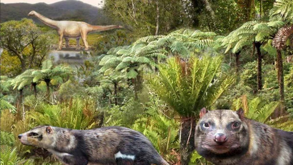 Researchers have found new mammals in the age of dinosaurs