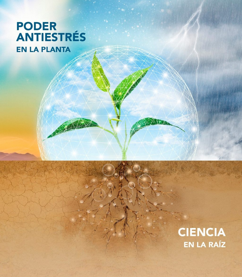 FMC Releases Seamac® Rhizo Biostimulator: The Science In The Roots, The Stress Resistance Power Of The Plant