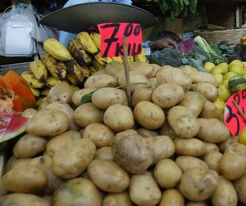 La entrada de papa fresca de EU a México genera preocupación a productores locales.