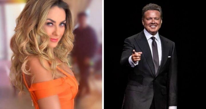 Luis Miguel: The conditions under which Aracely Armbula should appear in the Netflix series