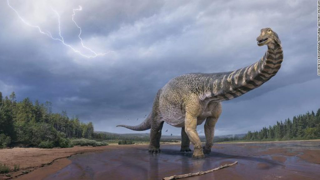 Australia's largest dinosaur is a new species, according to this measure