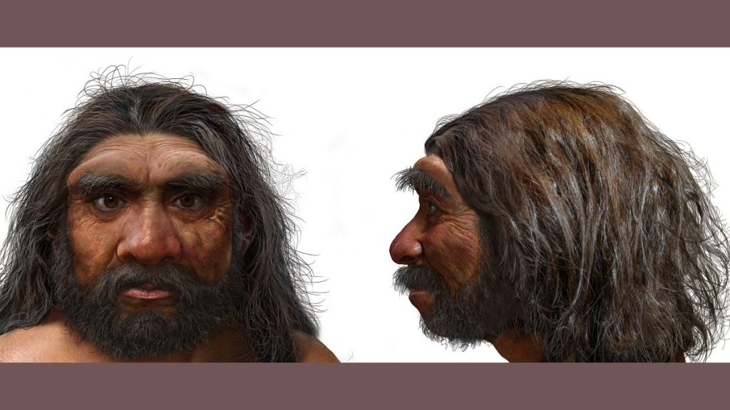 """""""Dragon Man"""" is our closest ancestor: scientists"""