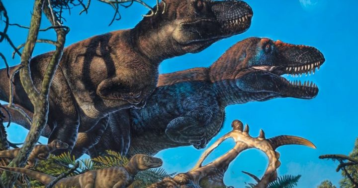 Science.  - Dinosaurs also nested in the arctic