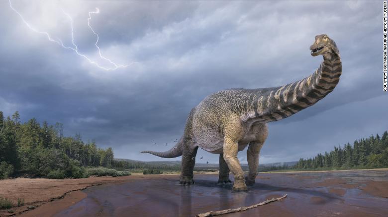 This was australotitan: a giant 70-ton dinosaur discovered in Australia