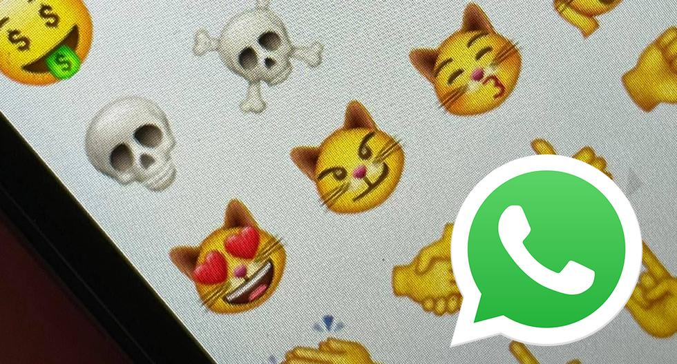 WhatsApp |  Are there nine cats in emoji |  feelings |  cats |  Meaning |  Meaning |  Applications |  Applications |  Smartphone |  Mobile phones |  viral |  trick |  Tutorial |  United States |  Spain |  Mexico |  NNDA |  NNNI |  SPORTS-PLAY