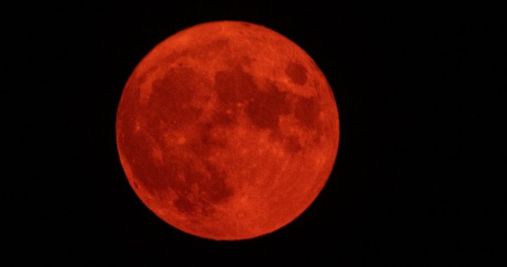 The Orange Moon dazzles and presumably on social networks
