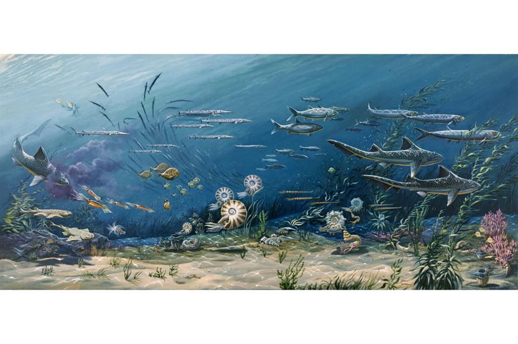 New research shows that the acidity of the atmosphere affects the ocean environment