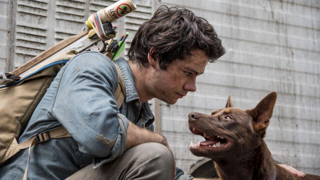 Las cinco películas de Netflix que no te puedes perder en el Día Internacional del Perro
