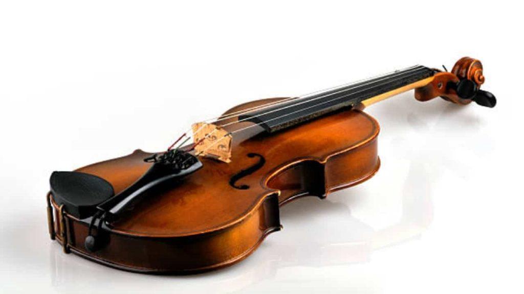La lucha contra los gusanos dio a los violines Stradivarius su sonido único: Estudio