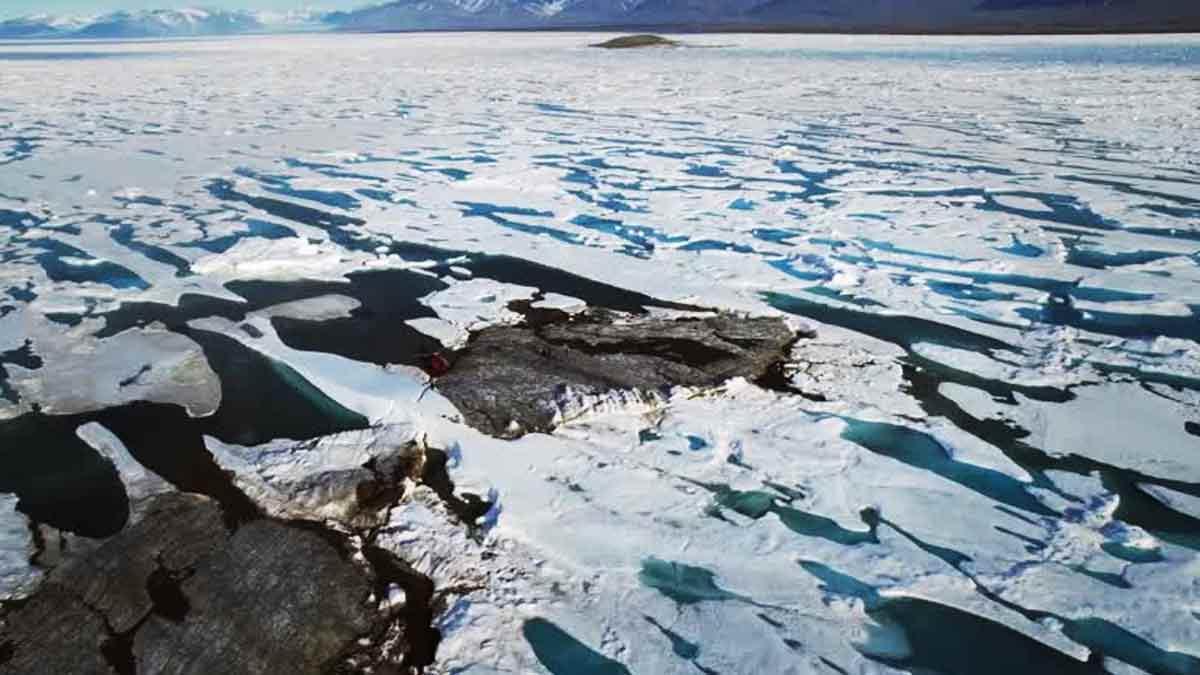 New island in Greenland