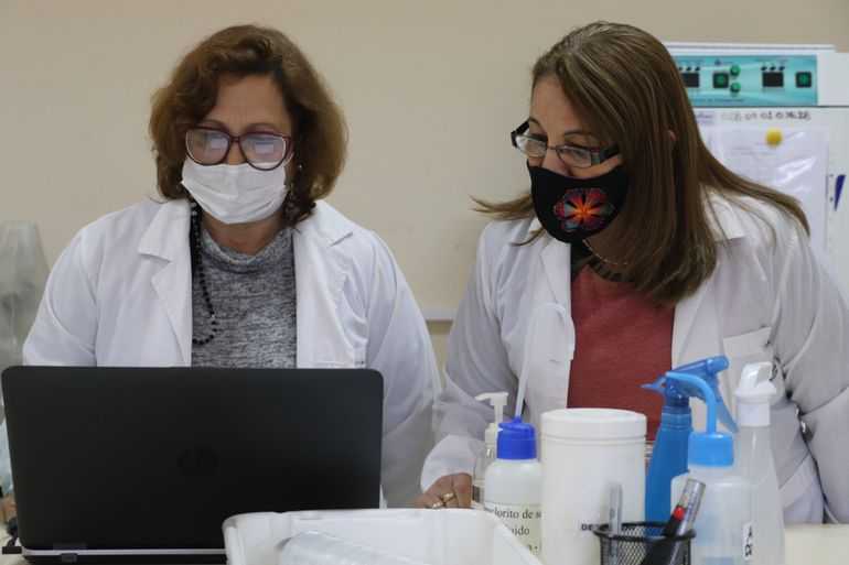 The researcher focuses on studying diseases transmitted by vector insects - science