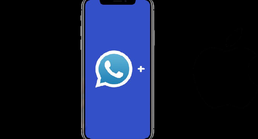 WhatsApp Plus 17.40 |  Where to download APK |  Applications |  Smartphone |  Update |  Applications |  Mobile phones |  nda |  nnni |  SPORTS-PLAY