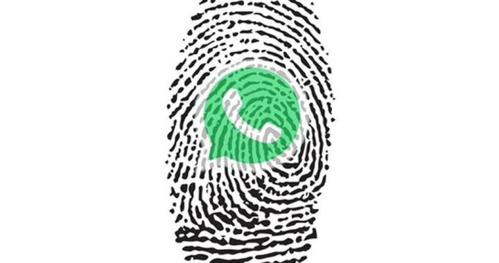WhatsApp: How to Lock an Account with a Fingerprint Without External Apps |  Applications |  Applications |  Smartphone |  Mobile phones |  viral |  trick |  Tutorial |  United States |  Spain |  Mexico |  nnda nnni |  Technique