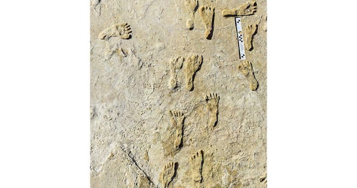 23,000-year-old human footprints found in White Sands