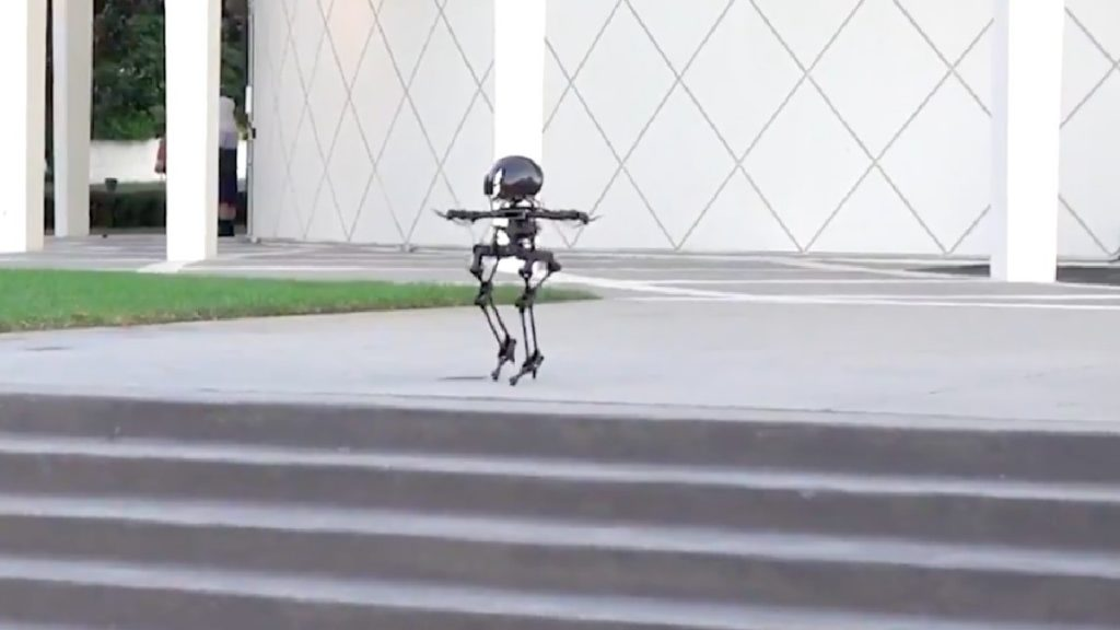 Lion: A robot that can fly and walk on a tightrope on two legs