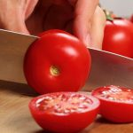 Mexico will monitor the ban on fresh tomatoes from entering the United States